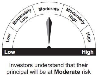 Aditya Birla Sun Life Dynamic Bond Fund | Debt & Money Market
